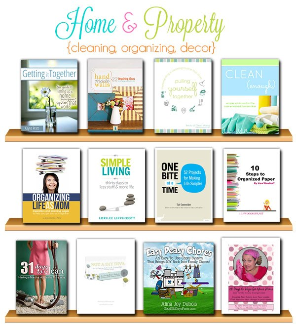 Home Cleaning &amp; Organization Books