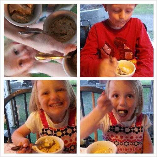 My children love it when I experiment with different kinds of ice cream!