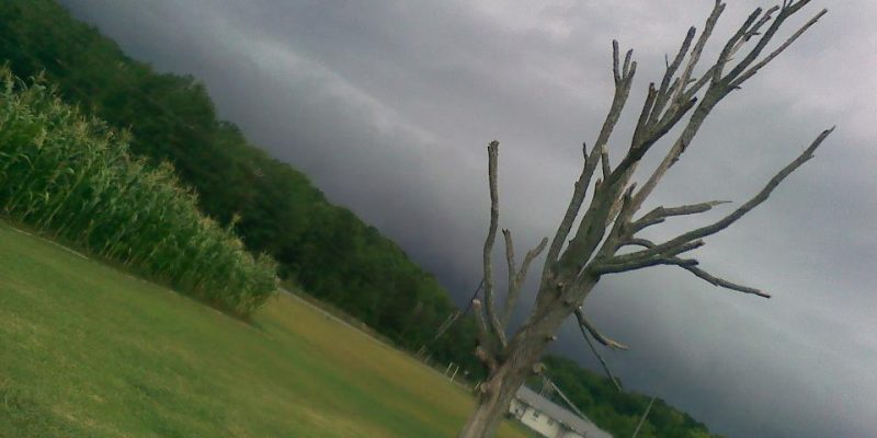 Thunderstorm coming!